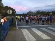 Miami Zoo 1/2 Marathon